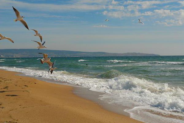 Фірма мусить повернути 24 гектари на Азовському узбережжі