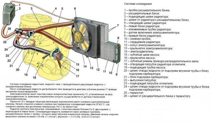Патрубки охлаждения ваз 2115 схема