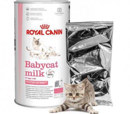Сухое молоко для котят корм royal canin