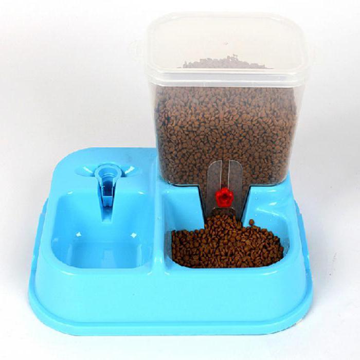 Кормушка-дозатор для кошек своими руками