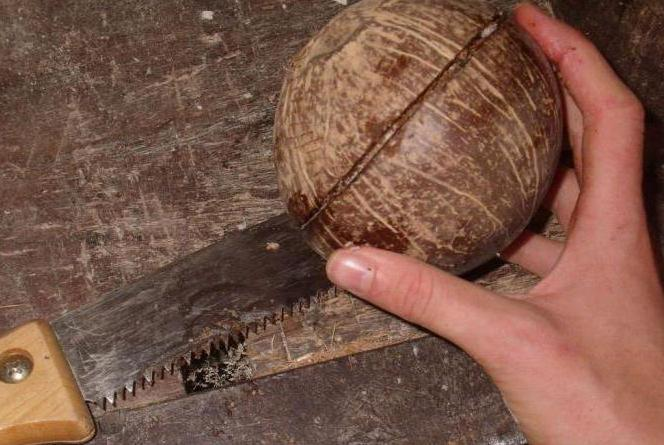 Поделка из кокоса своими руками 61
